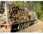 bois de chauffage 100% bien sec pour l\'hiver