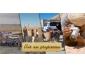 Agence de trekking à Djerba