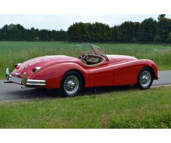 Vente 1955 jaguar xk140 occasion à vendre  3