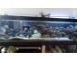 Aquarium de 600L complet a vendre