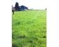 Prairie (70ares) à FELUY , 150€/cheval: 2 places libre