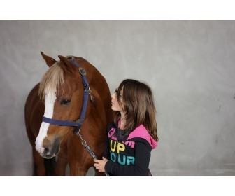 Cherche jeune cavalière pour ponette C 3