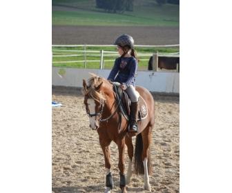 Cherche jeune cavalière pour ponette C 1