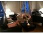 Appartement 3 pièces 2 chambres 76 m²