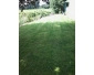 Votre jardinier de confiance dans le Hainaut