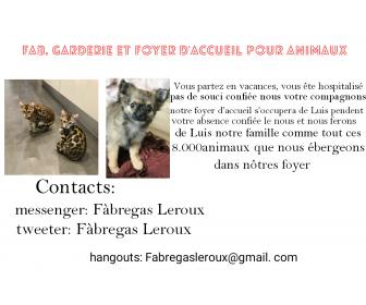 événement vente et don d'animaux 1