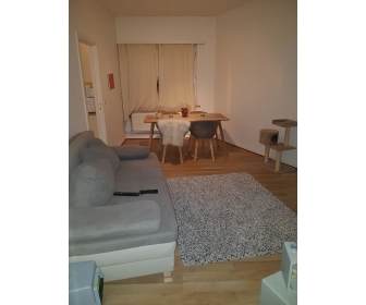 Appartement cosi et lumineux à louer 2