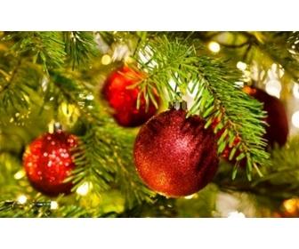 Offre de Noël 1
